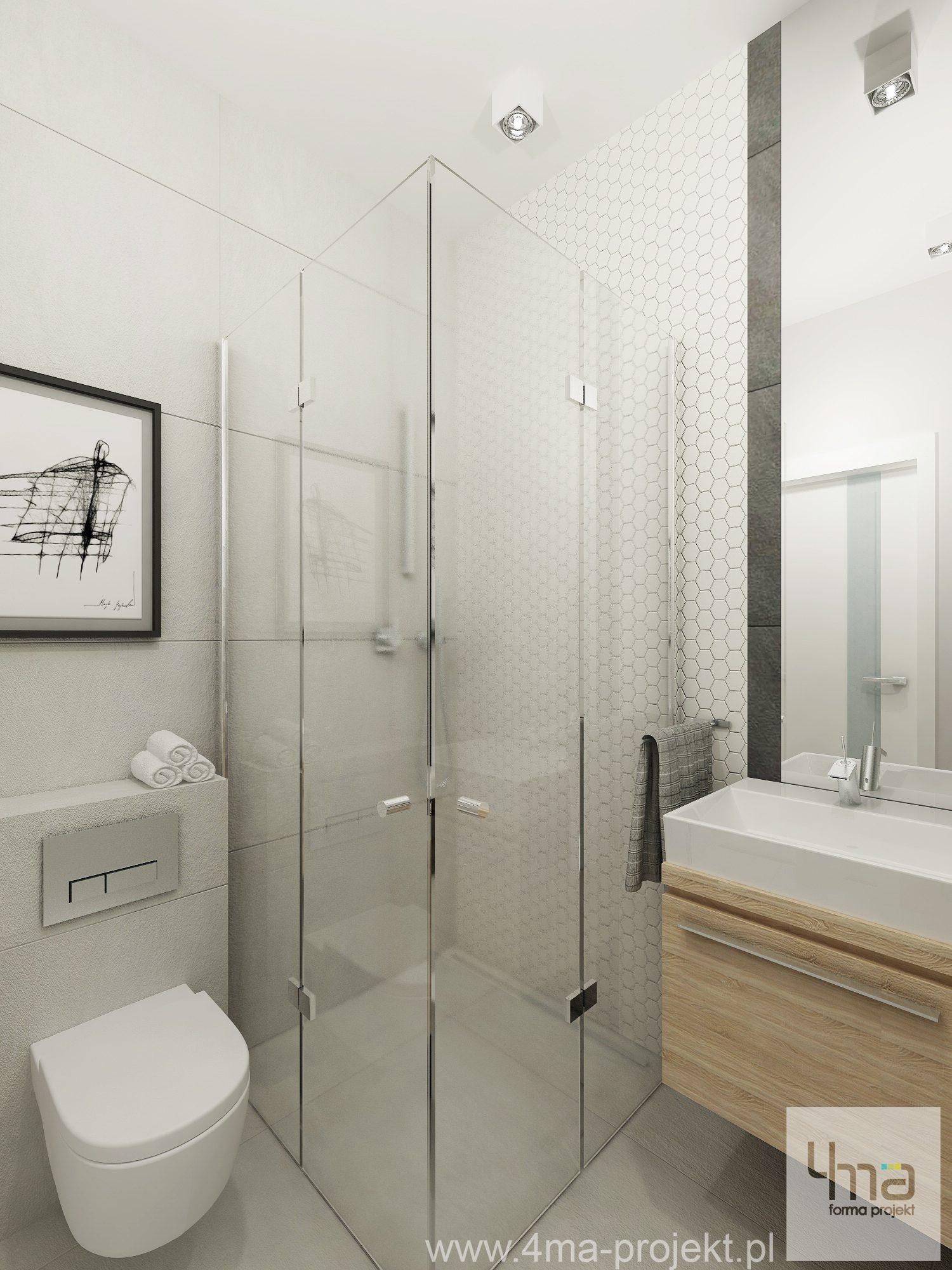 Jak Zaplanowac Aranzacje Lazienki Z Prysznicem M Mieszkanie