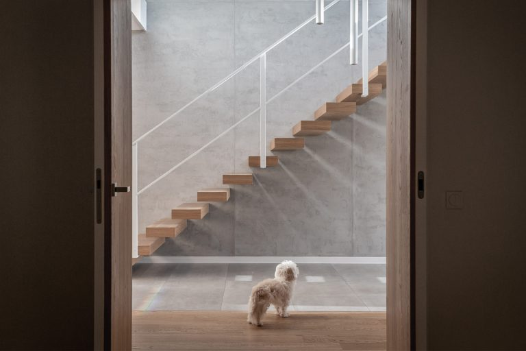 Formativ » Dom z pieskiem
